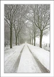 Second Snowy Lane