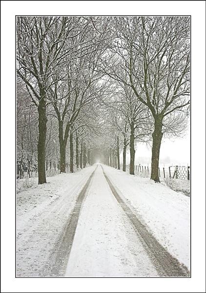 Second Snowy Lane by conrad