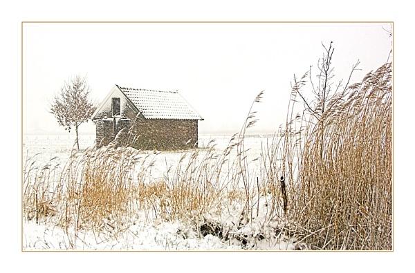 Snowy Shed by conrad