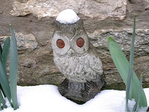 Snowcap by takethemoment
