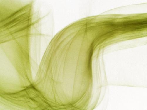 energy flow by Nade