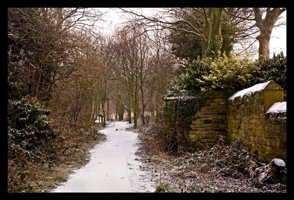 Frosty path by juldon