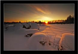 MORNING LIGHT, -39 C