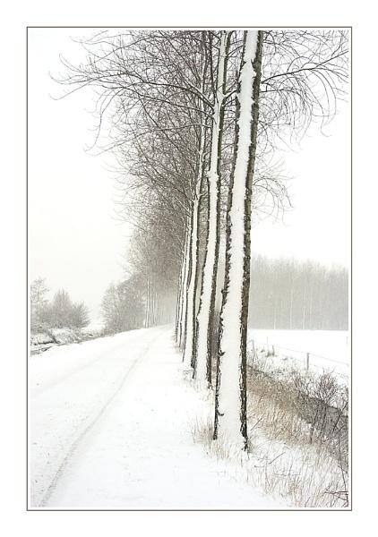 Third Snowy Lane by conrad