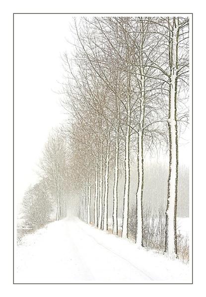 Third Snowy Lane - II by conrad