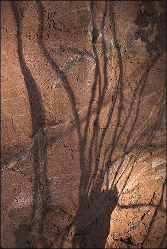 Knapp Shadows by willbrealey