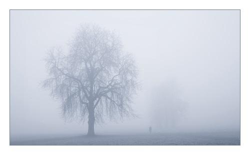 In the Fog by JohnHorne