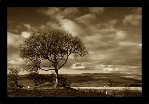 weardale from Crook by deanl