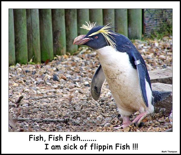 Flippin fish by mark2uk