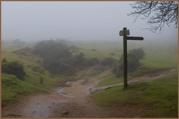Winter on the Moor by bigLol