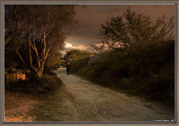 Trekker by BertC