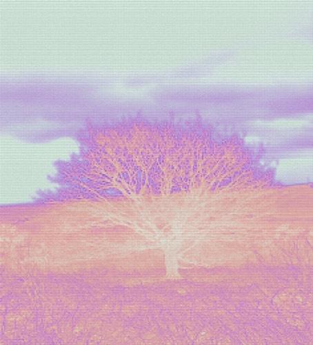 Neon Tree by sammyboy