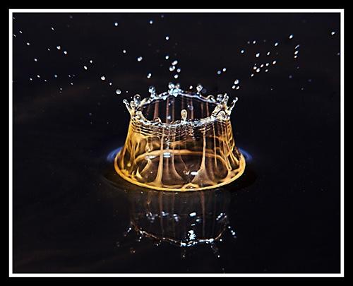 Splash by Trev_p