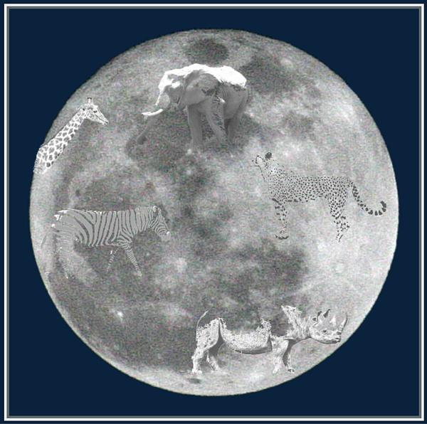 Marah Moon by X5DJM