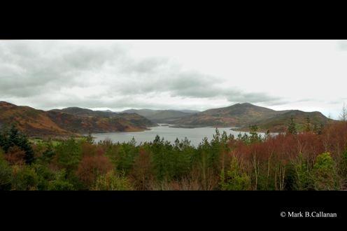 Carragh Lake View by Callanan