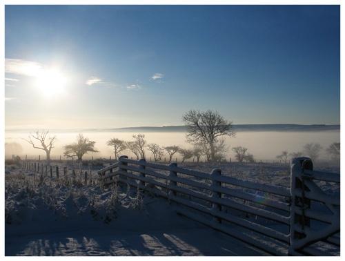 Morning by PAllitt