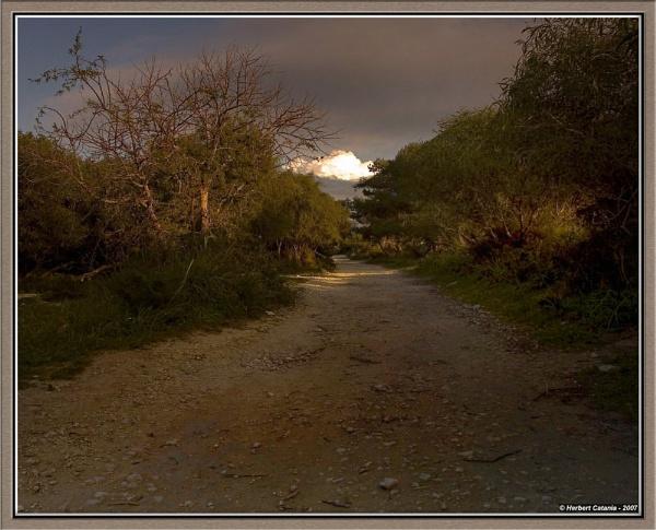 The Passage by BertC