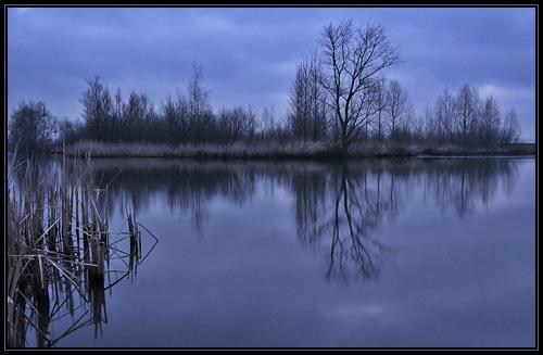 Morning Silence by Elisabeth