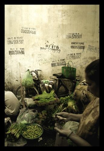 greens by custardcanvas