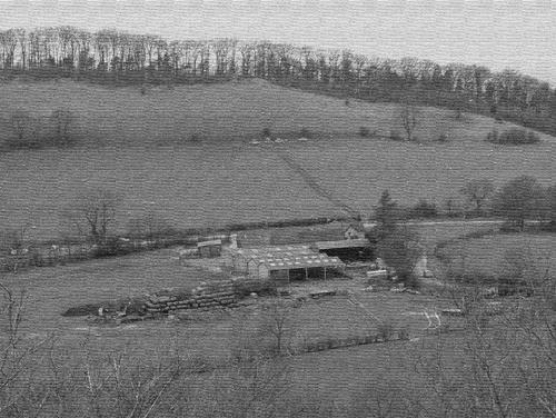 Down on the farm by sammyboy