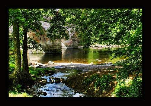 River scene by Leo