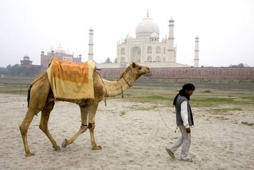 Taj Mahal by DirkV