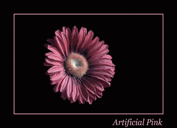 Artificial Pink by BillN