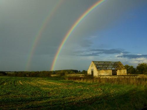 Rainbows by tavm