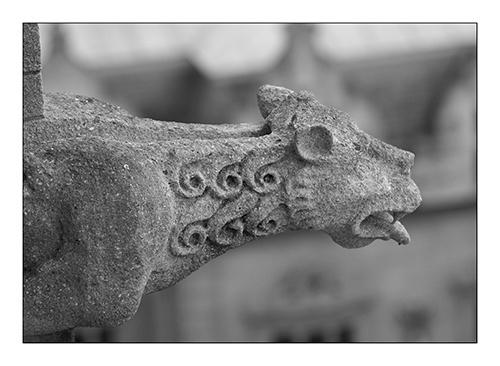 Gargoyle by paul_ec