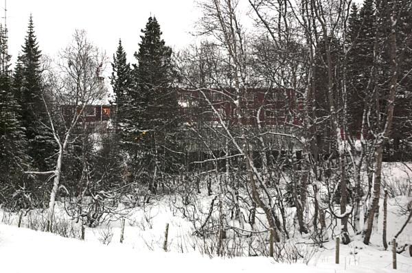 Flam railway Bergen by ahollowa