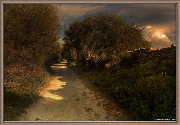 Way-Worn by BertC