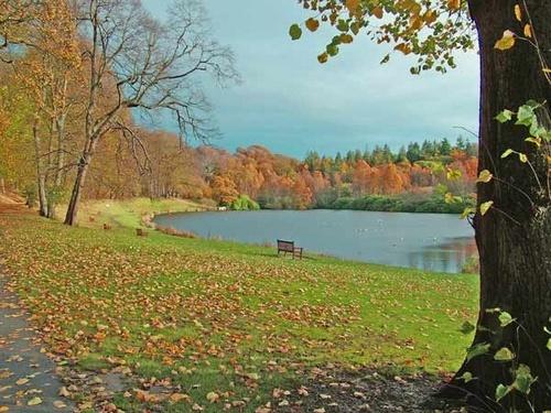 Callendar Park by bpjohn