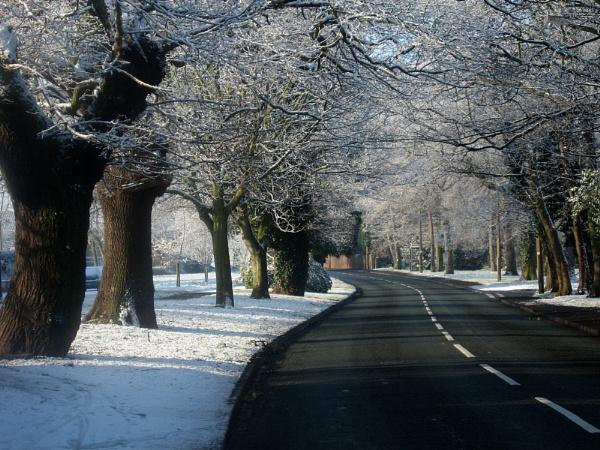 winter by Peter_Farrell