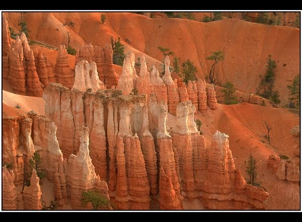 Bryce Canyon by TonyA