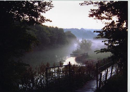 The Mist by kipp