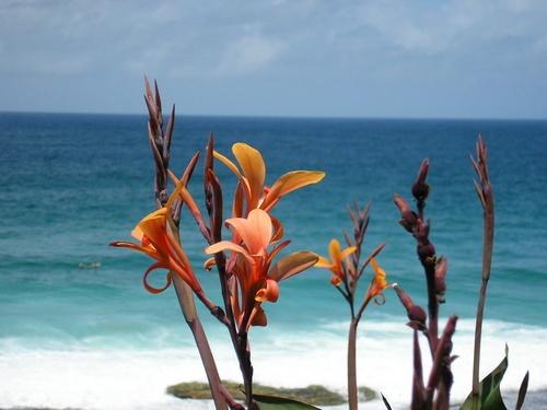 Koogee Beach by cymroDan