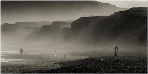 Mist in the Gower by RoyBoy