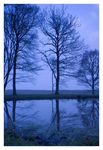 reflections at Bradbury Rings by nads69