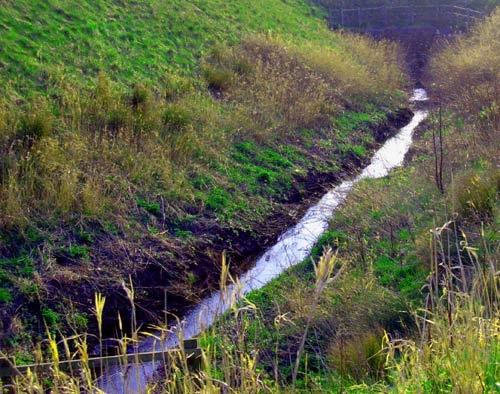 Robin park Stream by inferlogic