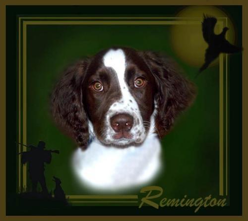 Remington redone by bdettmer