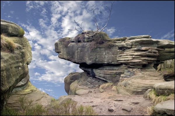 Red Deer Rock by stevenb