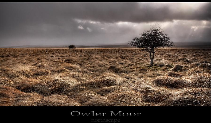 Owler Moor