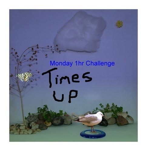 Mon 1hr Challenge by starliz