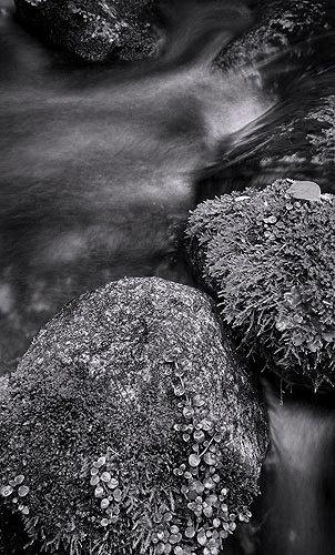 tasman creek 1 by steve allsopp
