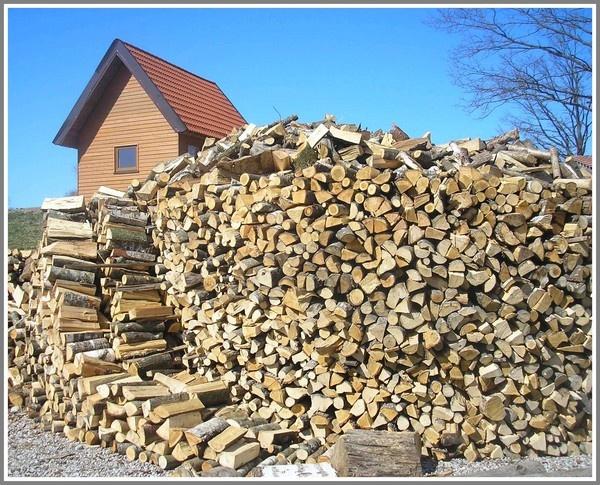 Woodcutter\'s Hut by Eiginta