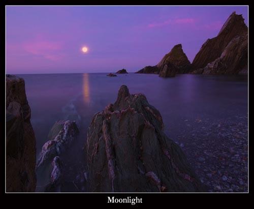 Moonlight by shandyman