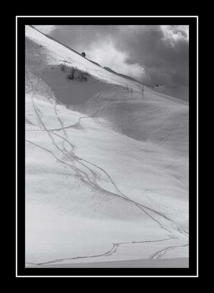Ski Tracks by Apollo