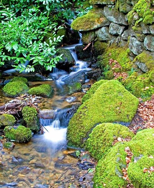 Dartmoor Stream by bigLol