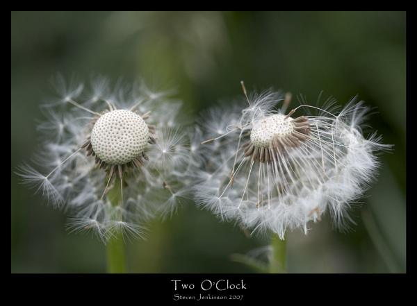 2 O\'Clock by stevenj
