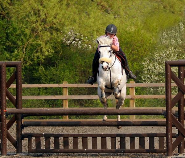 Pony jump by una